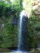 forest and waterfall in st lucia
